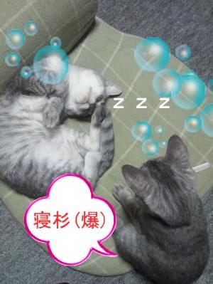 2011092900001.jpg